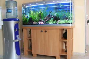 Тумб под аквариум своими руками