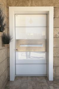 Дверь Hi-Tech 20