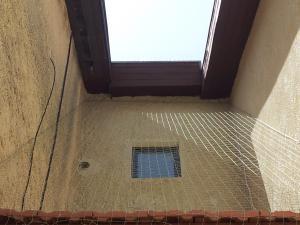 Защита частного дома от голубей в Ришон Ле Ционе.