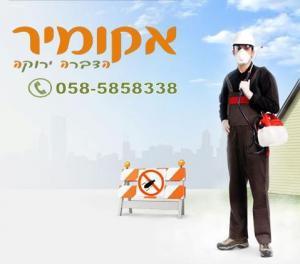 Защита от голубей Израиль.