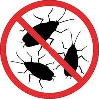 Избавиться от тараканов.