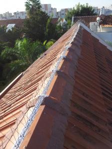 Ремонт крыш в Израиле