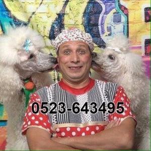 Ищите нас в фейсбуке по адресу -0523643495 הקרקס הרוסי